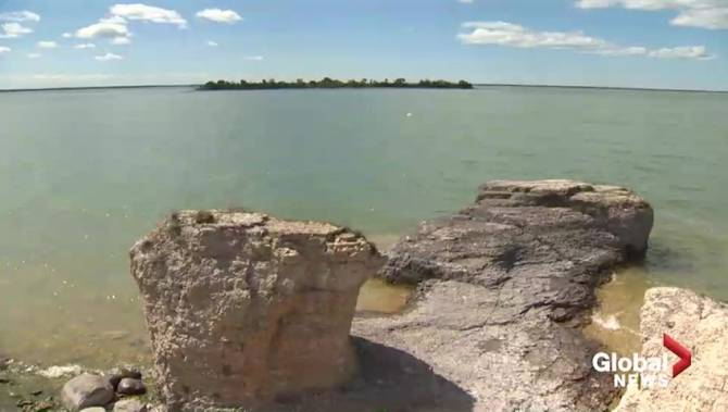 Steep Rock, Man. goats up for sale following complaints from locals - Winnipeg
