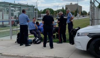 Winnipeg police apologize for taking photo of vulnerable citizen on bus bench - Winnipeg