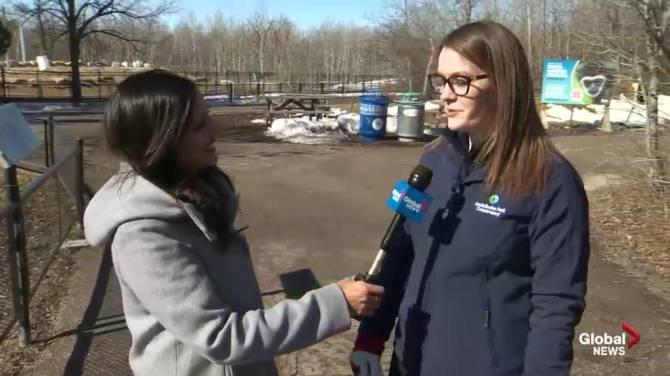 Assiniboine Park Zoo partners with Winnipeg community organizations for annual Wildest Dreams event - Winnipeg