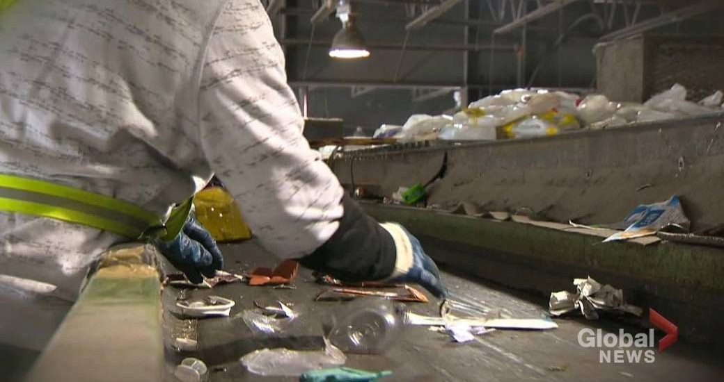 Are you contaminating Winnipeg's recycling without knowing? - Winnipeg