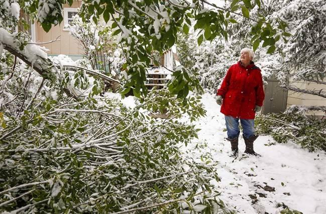 Rare September snow has Calgarians reeling