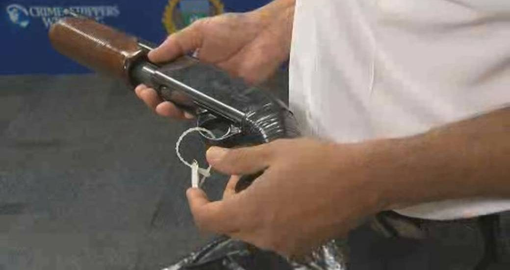 Manitoba judge says limiting imitation firearms could prevent so-called suicides-by-cop