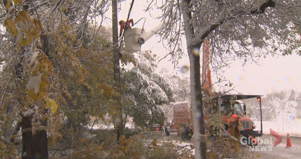 Snowfall warning issued for parts of southern Manitoba - Winnipeg