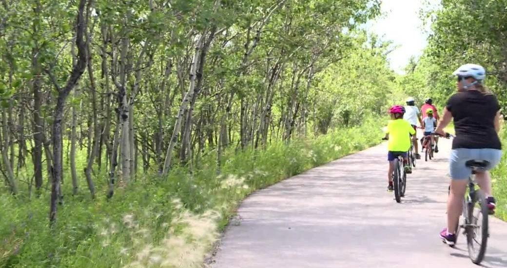 Winnipeg's Assiniboine Forest reopened after coyote sightings - Winnipeg