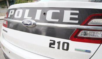 Winnipeg police to discuss interprovincial drug bust Wednesday